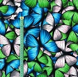 Jersey Butterfly blue digital print