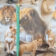 Jersey BIO Lion family digital print